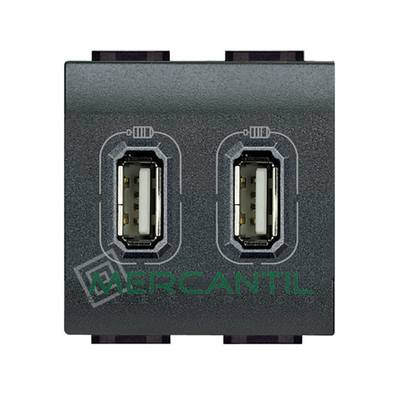 Base USB Doble con Tension 2 Modulos Living Light BTICINO Antracita