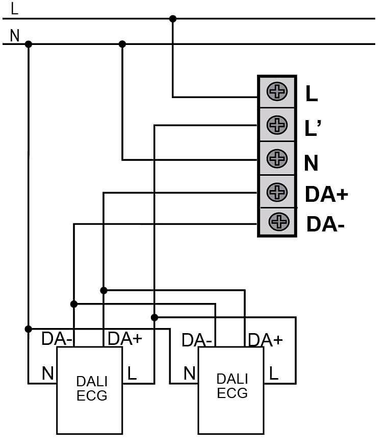 conexiones-DM-TE1-DA1