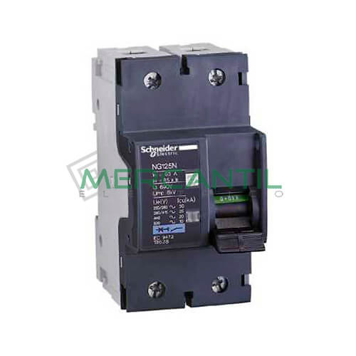 Interruptor magnetotermico 2p 25a ng125n sector industrial - Interruptor magnetotermico precio ...