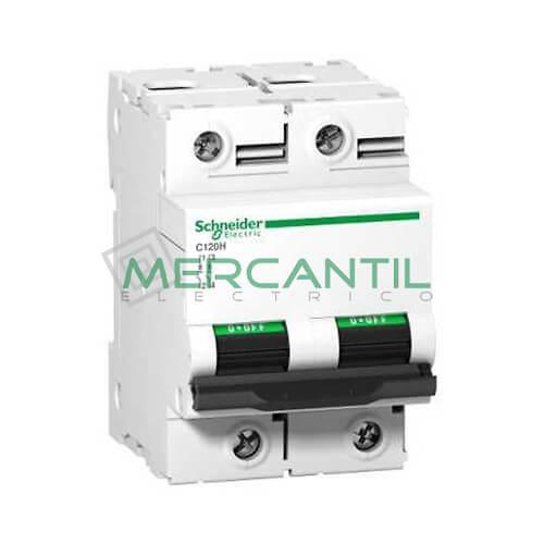 magnetotermico-2p-c120h-A9N18470
