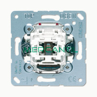 Interruptor Bipolar con Lampara Neon LS990 JUNG