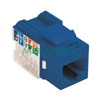 Toma Hembra RJ45 Categoria 6 UTP Keystone EXCEL - Color Azul